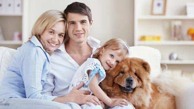 Wills & Trusts dog-young-family Direct Wills Northamptonshire